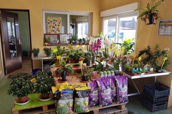 Services jardinerie horticulture Epiniac